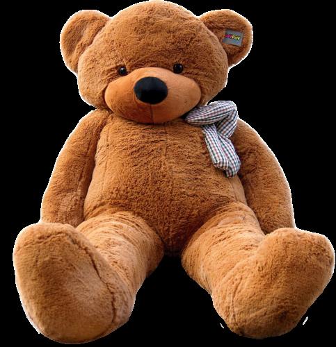 bear plushie