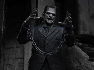 Horror Action Figures, Frankenstein's Monster (Black & White) Custom Action Figures